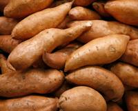 Див ямс (див ям, мексикански сладък картоф)